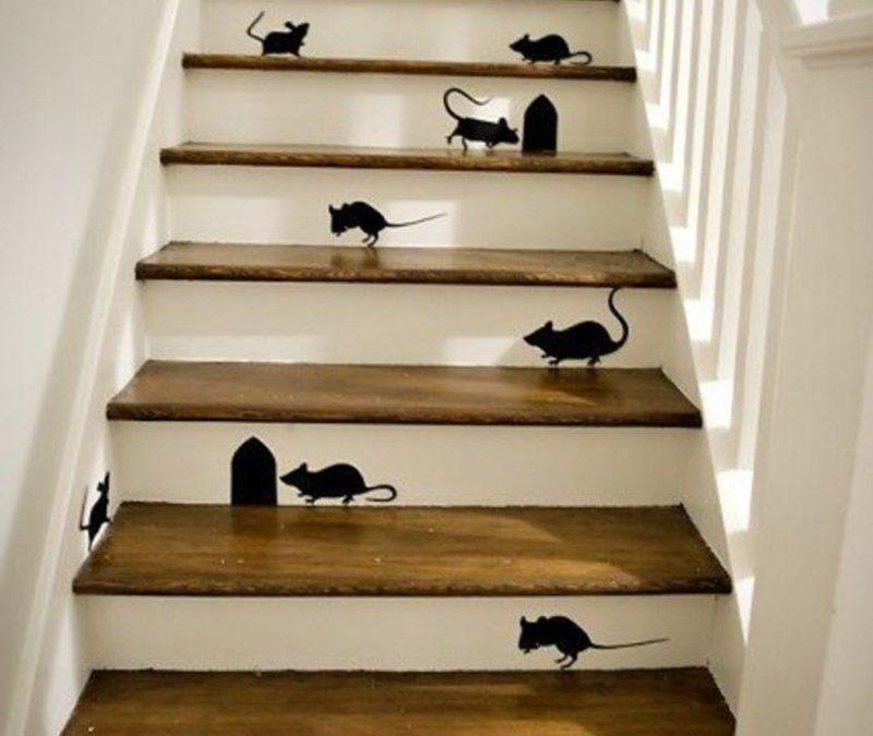 Különleges lépcsők