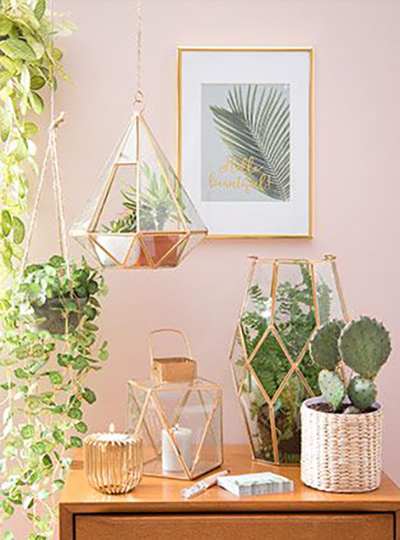 Add a lot of plants in front of a pale pink wall and suddenly your home will look alive.