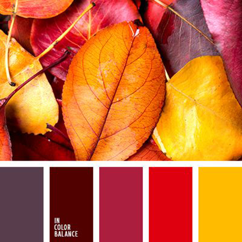 Őszi színskála 1