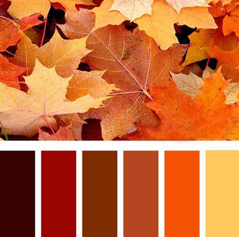 Őszi színskála 2